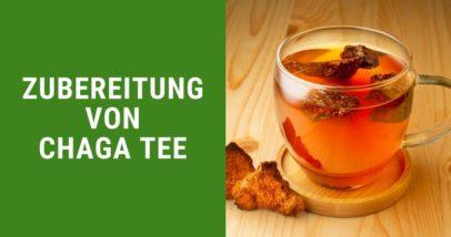 Chaga Tee Zubereitung